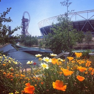 Iconic view of the Olympic Stadium with the ArcelorMitttal Orbit sculpture designed by Anish Kapoor in the background. Fantastic wildflower landscape.