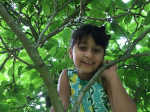 Higher and higher. Great-niece Loveen climbing the magnolia tree!